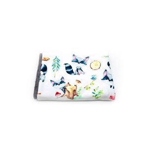 Couverture Minky - Ratons 30 x 40